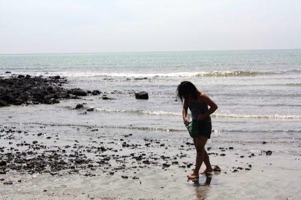 marea chinei