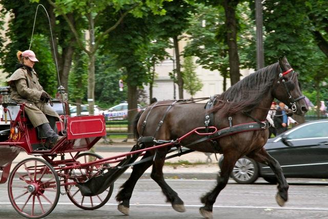 Cal şi femeie. Paris, secolul XXI.
